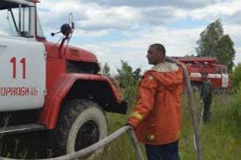 В тушении лесного пожара под Харьковом задействован вертолет