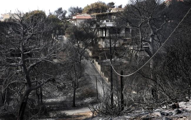 Премьер Греции взял на себя политическую ответственность за трагедию в Аттике