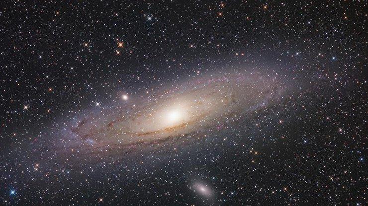 Тарантул, краб и муравей: NASА показало галактики в виде животных