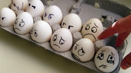 Кто заработает на яичном кризисе в ЕС