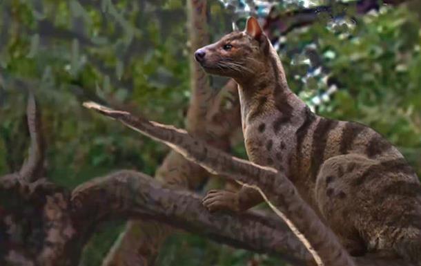 В Африці знайшли невідомих давніх хижаків