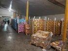 Податкова міліція Києва розкрила масштабну схему із незаконного експорту зернових і горіхів у зоні Одеської митниці. ФОТОрепортаж