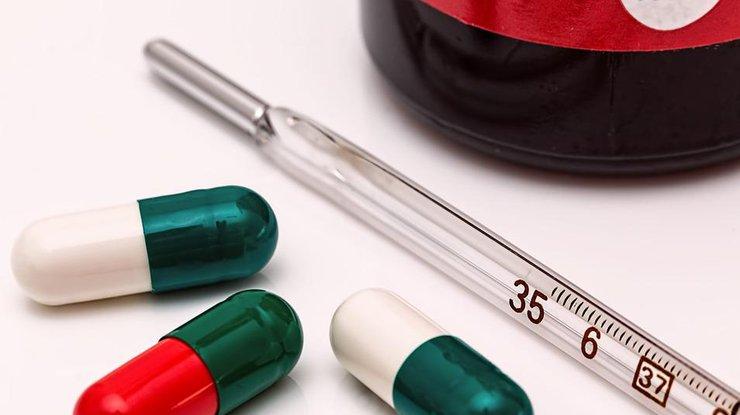 Ученые назвали животных-носителей самых опасных вирусов