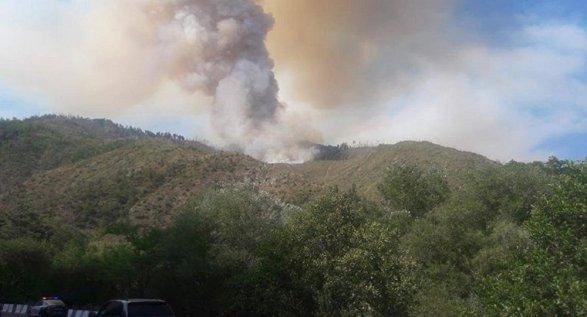 Грузия благодарит Азербайджан за помощь в тушении пожара