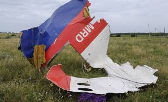 Rada ratifies agreement with Netherlands regarding serving of punishment in Ukraine of those guilty of downing of flight MH17