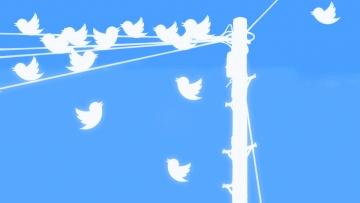 Впервые в истории: пользователь Twitter собрал 100 млн подписчиков