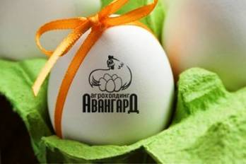 Авангард в 2017г открыл около 10 новых стран для экспорта яиц
