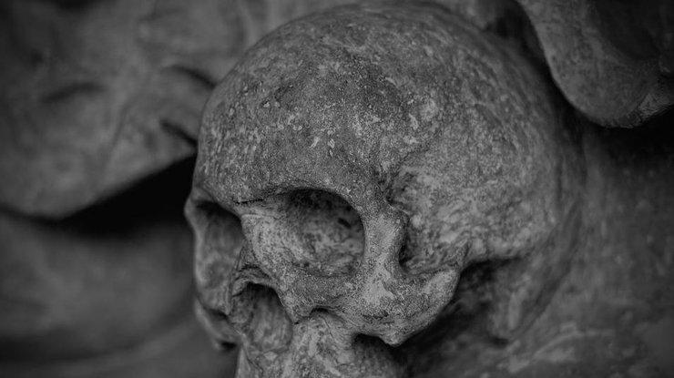 Как выглядела девушка 9 тысяч лет назад: ученые создали портрет