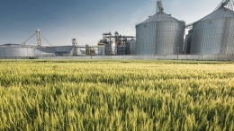 ЕБРР предоставит сингапурской компании Olam деньги на строительство зернового терминала в Украине