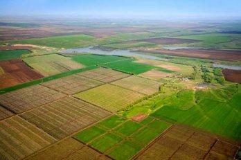 Рада может рассмотреть законопроект об обороте земель сельхозназначения в октябре