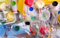 В Пакистане нашли гриб, который питается пластиком