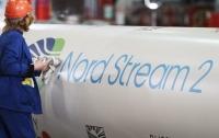 Экологи призвали Меркель запретить строительство Северного потока-2
