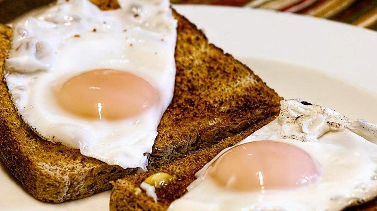 Лекарство от рака нашли в куриных яйцах