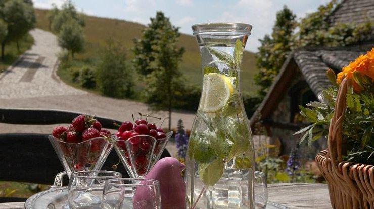 Помогает похудеть и вывести токсины: 6 мифов о воде с лимоном