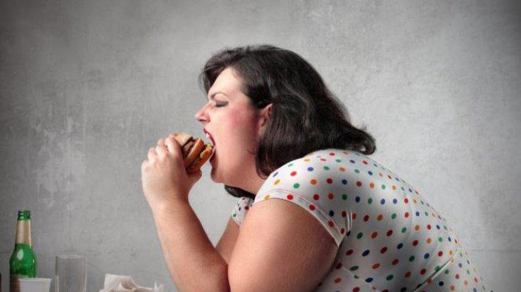 Ожирение: в чем главная причина заболевания