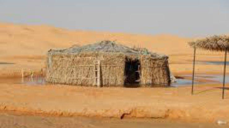 Пустыня Сахара может стать зеленой