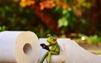 Туалетная бумага опасна для здоровья - медики