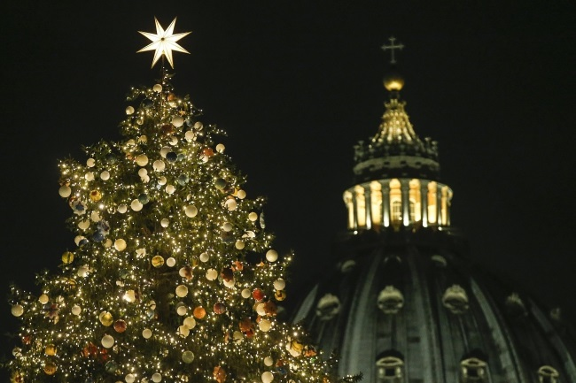 Polish Christmas tree lights up in Vatican