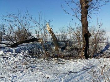Жители Травневого и Гладосового были вынуждены покинуть свои дома из-за обстрелов