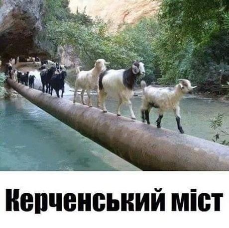 Керченский мост придется разбирать, - российская правозащитница