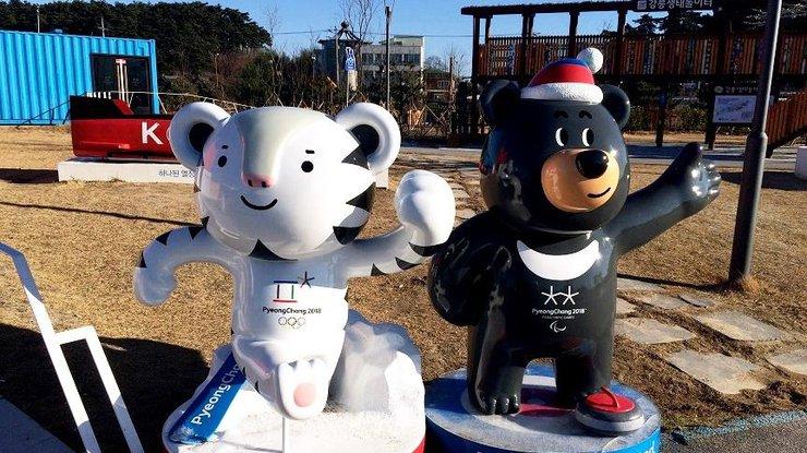Олимпиада-2018: расписание соревнований 14 февраля