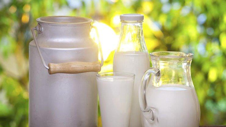 Молоко опасно для организма - ученые