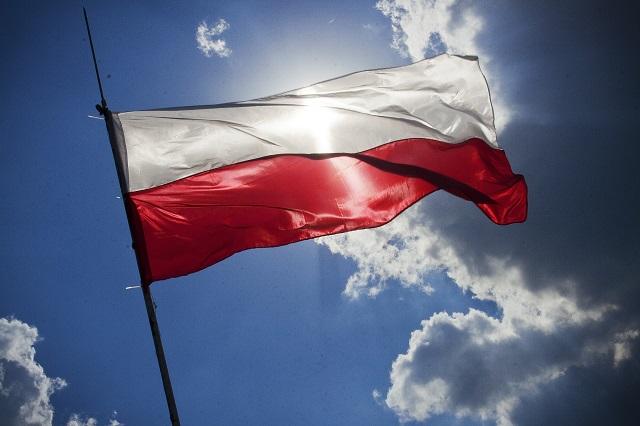 У Швейцарії обговорили внесок польської еміграції для незалежності