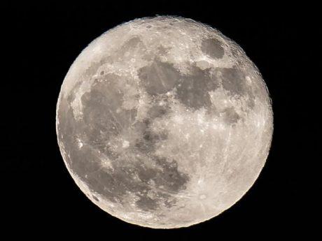 SpaceX отложила дату первого туристического полета вокруг Луны
