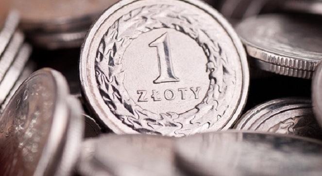Польські підприємці не хочуть змінювати злотий на євро