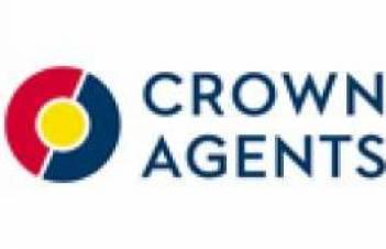 Crown Agents на 100 процентов выполнило закупку лекарств по дыхательным расстройствам у новорожденных за средства госбюджета-2017