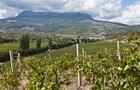 Через сходження селів у Криму постраждали виноградники Массандри