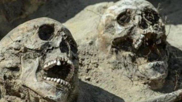 В Польше обнаружили кричащие черепа (фото)