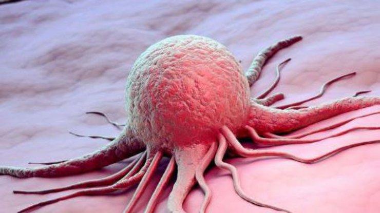 Ученые нашли лекарство от рака