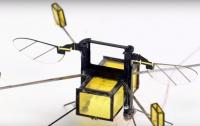 Робота-пчелу научили плавать и летать (ВИДЕО)