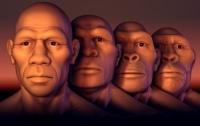 Появилась новая теория происхождения человека