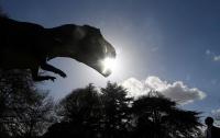 Guardian: во Франции скелет динозавра ушел с молотка за €2 млн