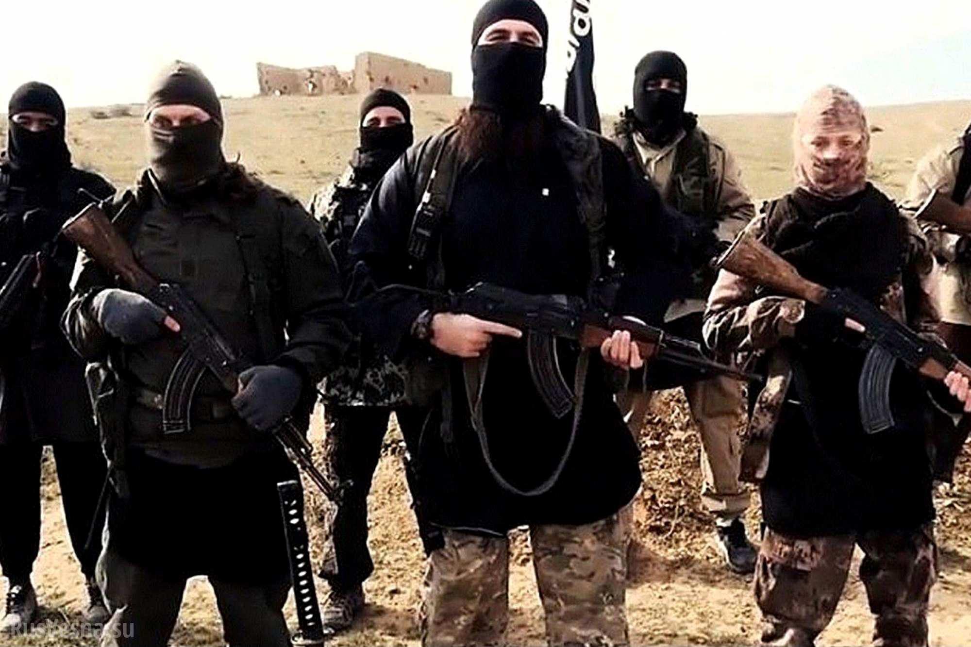 Боевики ИГИЛ в октябре казнили 128 человек