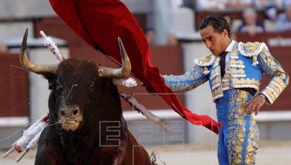 Во Франции во время боя с быком погиб тореадор