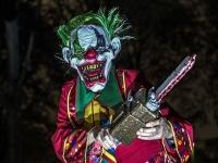 Полиция Германии зафиксировала уже 370 случаев нападения злых клоунов на людей