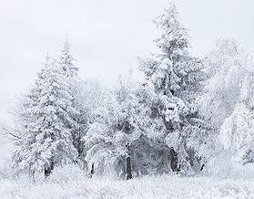 В Україні до початку наступного тижня похолоднішає ще більше