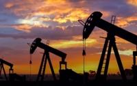 Потребление нефти начнет уменьшаться после 2040 года, - исследование