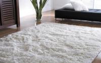Ученые заявили, что чистота в доме может спровоцировать онкологию