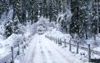 Ученые заявили о стремительном изменении климата в Украине