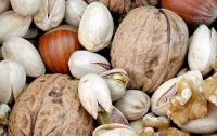 Медики выяснили, как влияют орехи на сердце