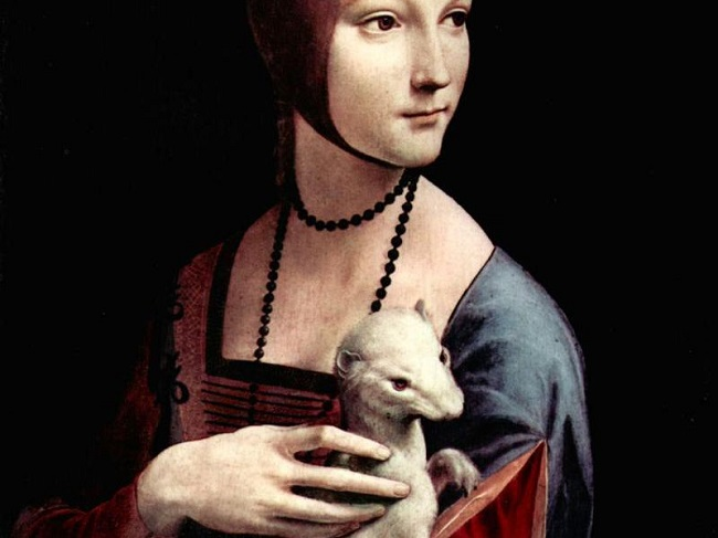 the lady with an ermine ↑m kemp, entry for the lady with an ermine in the exhibition circa 1492: art in the age of exploration (washington-new haven-london) pp 271f, states the identification of.