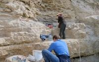 В Египте нашли самый крупный неповрежденный саркофаг