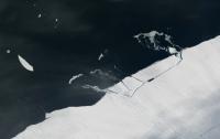 От Антарктиды откололся айсберг размером в Манхеттен (видео)