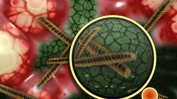 Какие предметы быта провоцируют болезни: неожиданный перечень