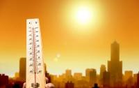 Ученые предсказали наступление смертоносной жары в США
