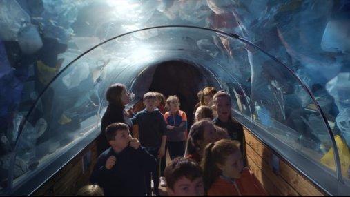 Пластик вместо морских животных: Гринпис показал детям шокирующий океанариум